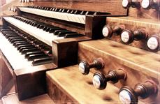 Organ stops