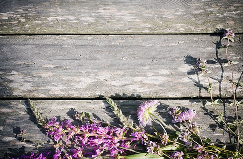 flowers on wooden background.jpg