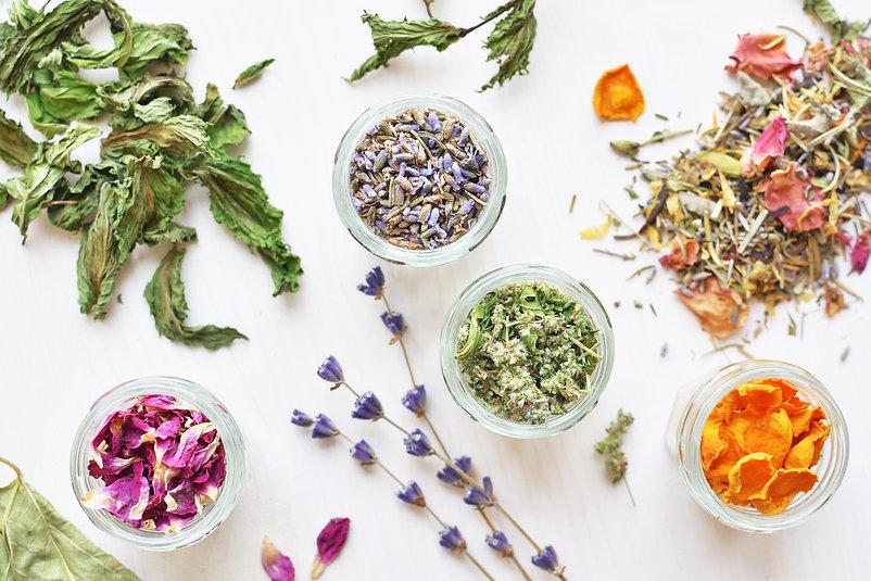 various herbal tea ingredients in glass