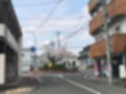 IMG_4357.jpg