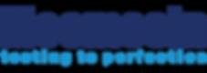 mecmesin-logo.png