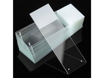 Buy 3, get 1 microscope slides from Globe Scientific