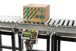 Conveyer Scales