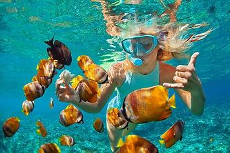 best-snorkeling-in-oahu.jpg