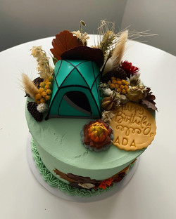 Camping themed cake_LHK