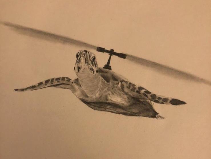Heli Turtle