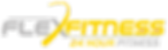Flex Fitness Main logo.png