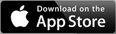 LiveTunes Download