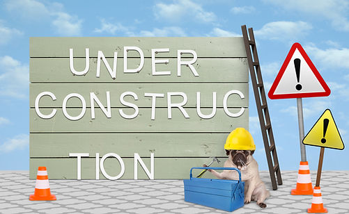 cute repairman worker pug puppy dog with yellow safety helmet, sitting down next to wooden