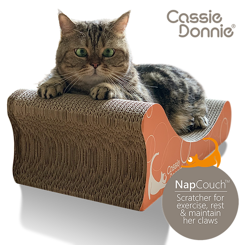 NAP COUCH