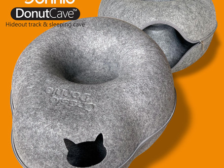 What's DONUT CAVE?