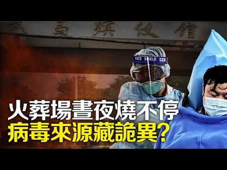 【解讀】武漢肺炎致死率有多高?火葬場為何晝夜燒不停?病毒來源藏詭異?|世界的十字路口 唐浩