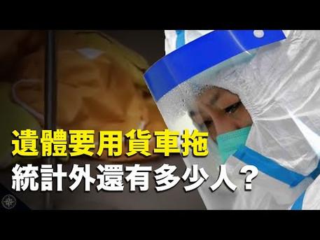 【解讀】武漢醫生爆「遺體多到用貨車拖」;湖南爆發禽流感;中共數據藏神秘規律?內蒙古驚傳「無接觸」感染|世界的十字路口 唐浩