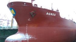 AGNES 4