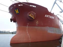 ANTIGONI1010444