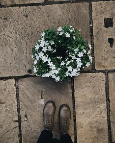Living Wreaths 🌿 Ideal for a long lasti