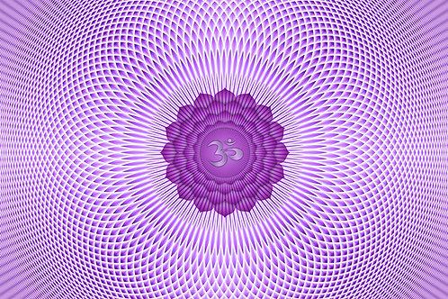 Day7平衡頂輪 靜觀呼吸