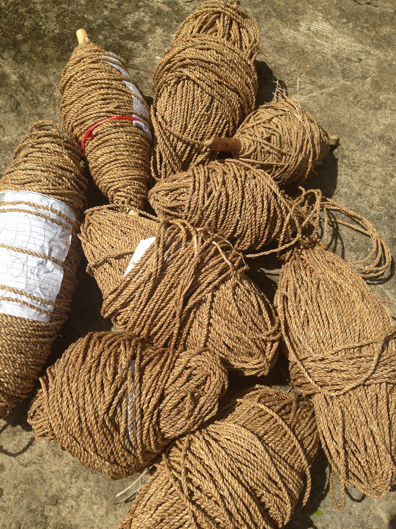 Water Hyacinth Rope from Communities.JPG
