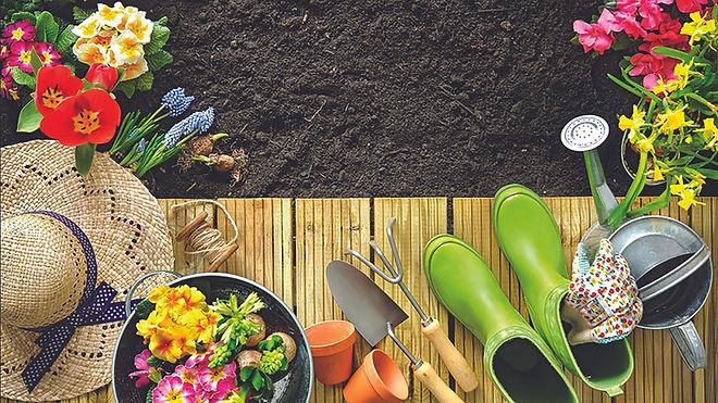 gardenspring.jpg