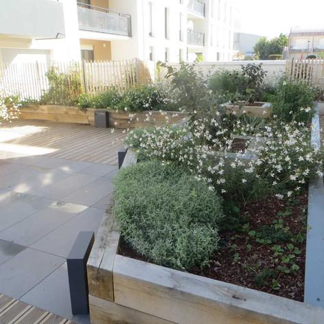 Jardin entre bâtiment