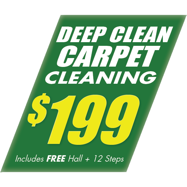 CarpetCleaning199.png