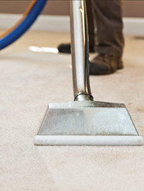 ind_expert_carpetcleaning_0914_chris03.j