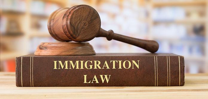 Immigration Lawyer Agent Sydney