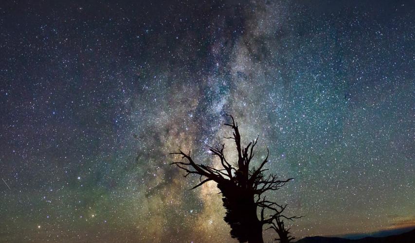 Rising Galaxy