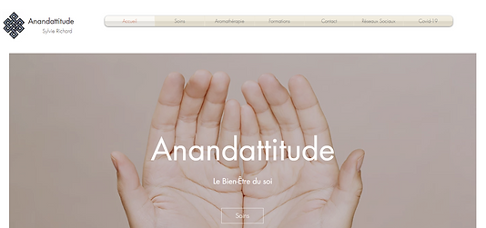 anandattitude.ch.png