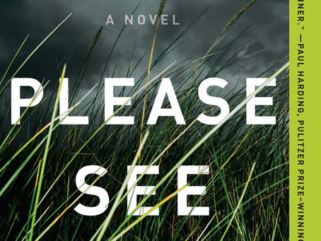 Book Buzz: Please See Us by Caitlin Mullen