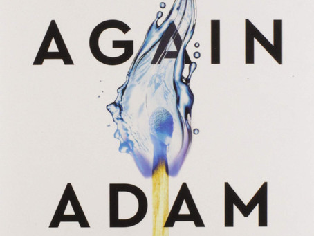 Book Buzz: Think Again: The Power of Knowing What You Don't Know by Adam Grant