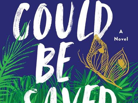 Book Buzz: What Could Be Saved by Liese O'Halloran Schwarz