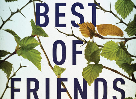 Book Buzz: The Best of Friends by Lucinda Berry