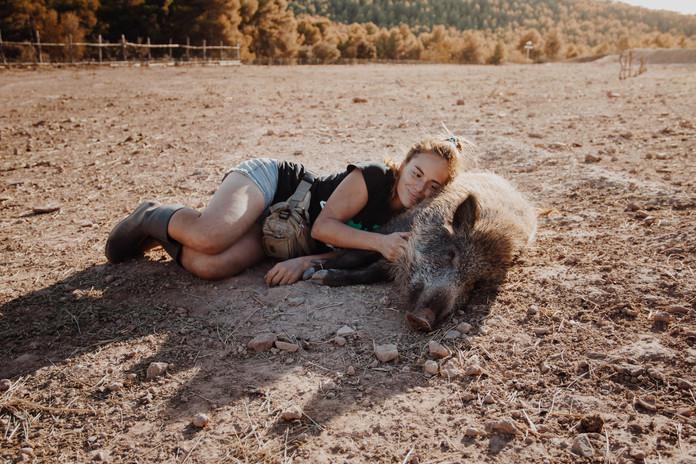 El Hogar Animal Sanctuary
