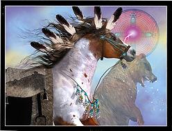 Pinto Pony Bear.jpg