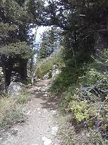 Sandia Trail.JPG