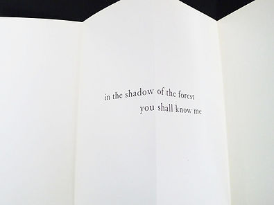06a. In the Shadow.jpg