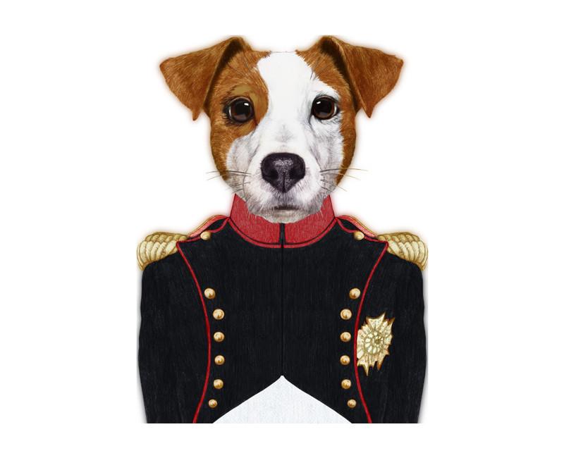 décoration tableau chien uniforme Napoleon
