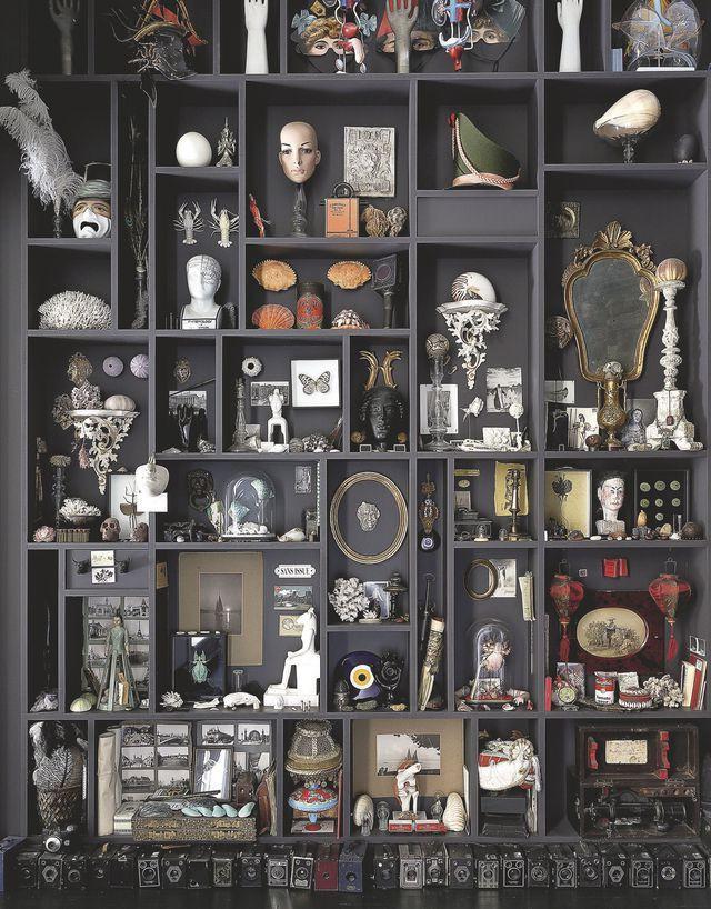 cabinet de curiosités Lavaur étagères
