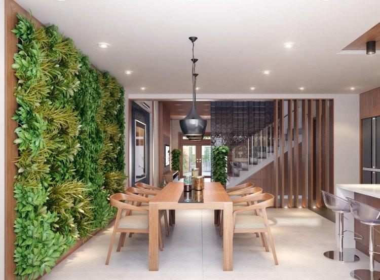 plantes vertes Lavaur