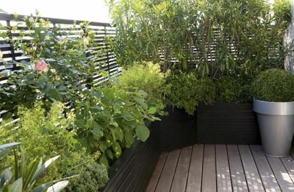 décorer son balcon plantes