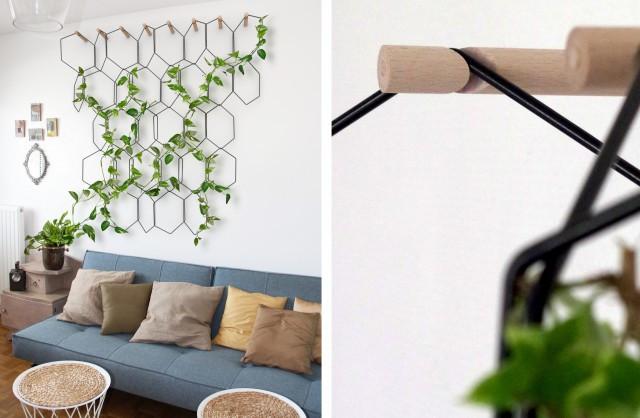 treille plante verte intérieur