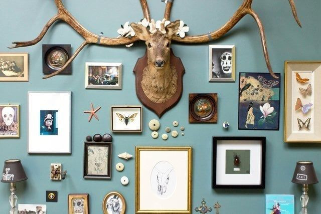 DIY cabinet de curiosités