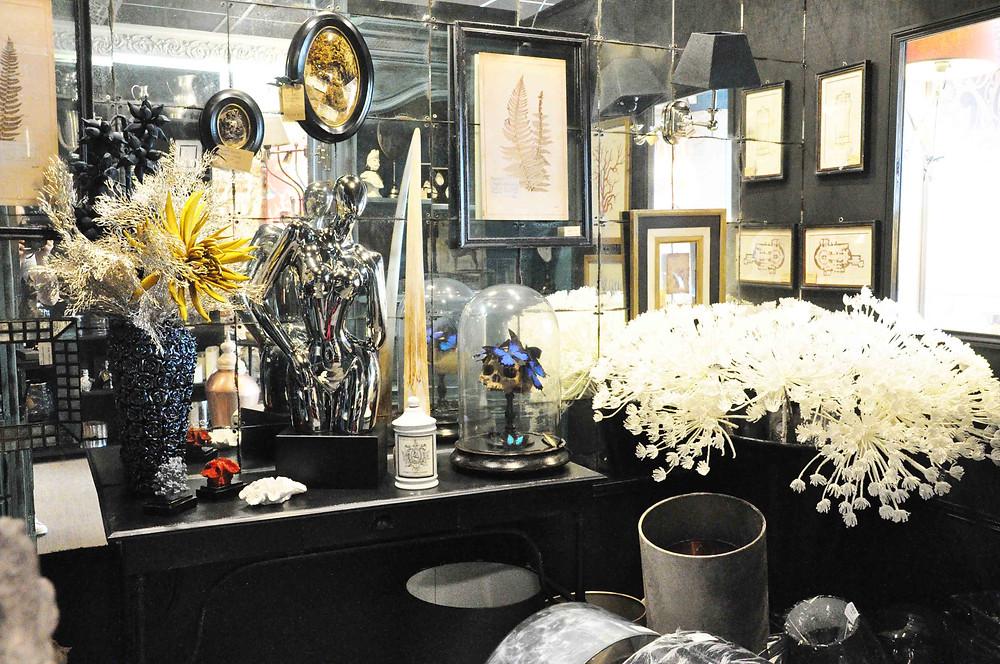 décoration ambiance cabinet de curiosités