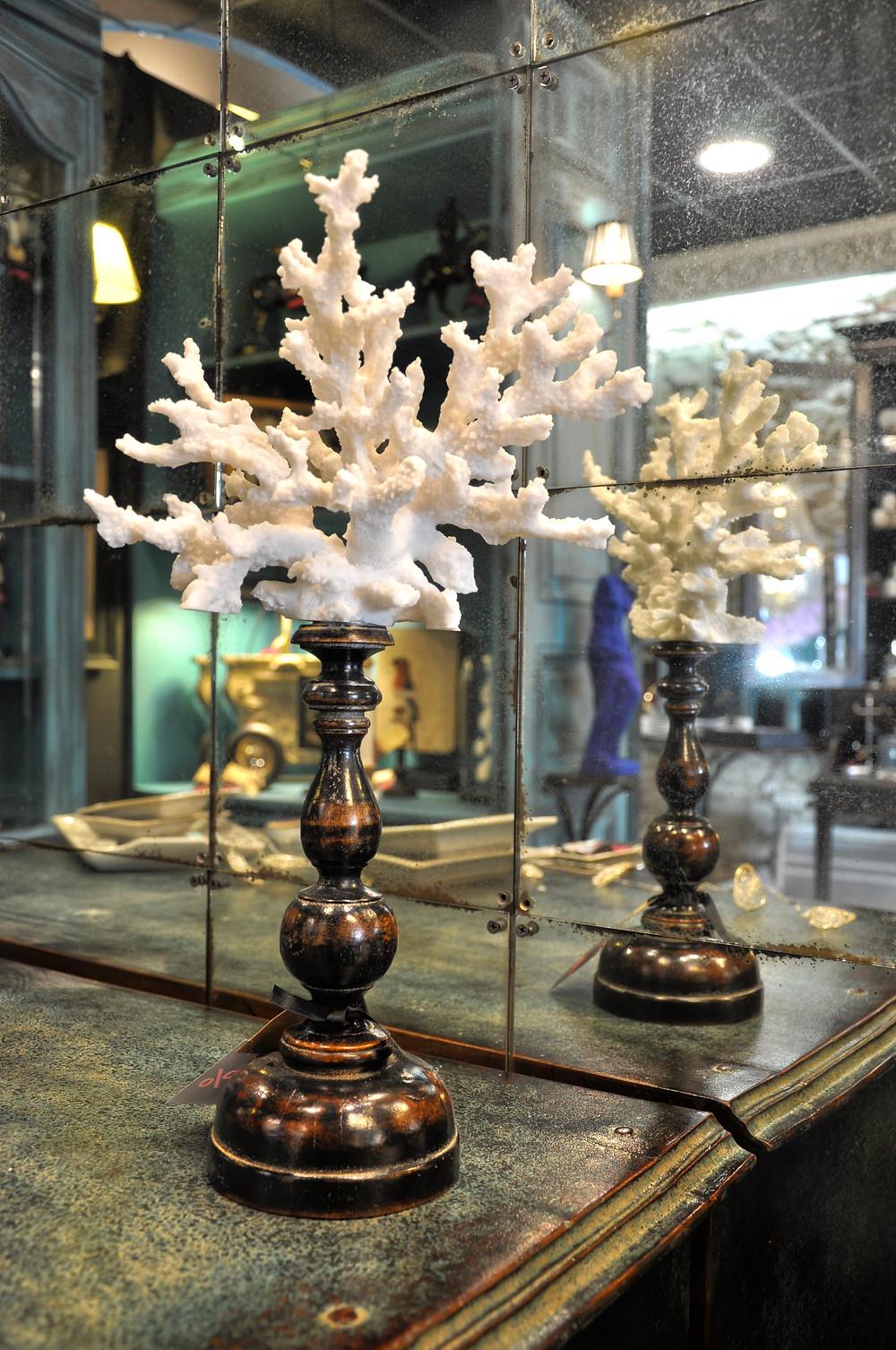 décoration branche corail blanc