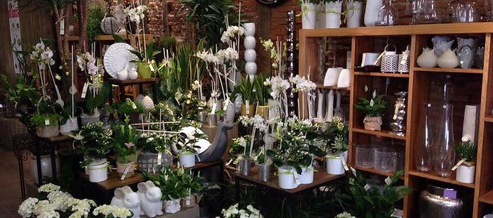 Fleuriste décoration Lavaur