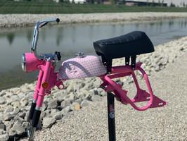 breast cancer mini bike.jpg