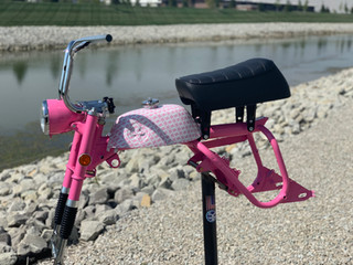 breast cancer mini bike.jpg