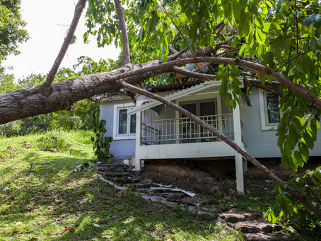 Storm Damage-Are you Covered?