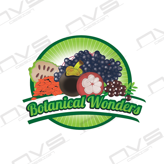 Botanical Wonders Logo Illustration